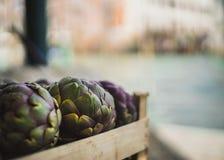 Артишоки венецианского рынка пурпурные на канале стоковые фото