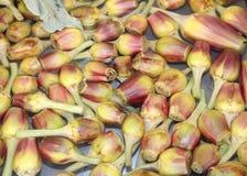 артишоки свеже сжатые для продажи в фрукте и овоще стоковая фотография