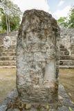 Археологические раскопки Мексика Calakmul стоковые изображения