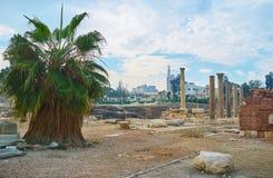 Археологические раскопки посещения Александрии, Египта Стоковые Изображения RF