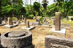 Археологические экспонаты музея Музей под открытым небом Старое Goa, Индия стоковое фото