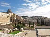 археологический парк Иерусалима стоковое фото rf