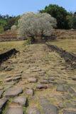 Археологическое место Wat Phu около Champasak Стоковые Изображения RF