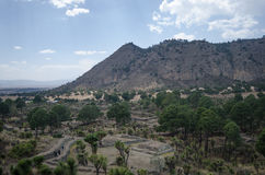Археологические руины в Мексике стоковые фотографии rf