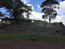 археологический парк стоковое изображение rf