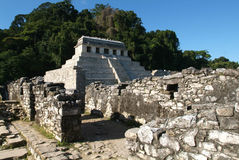 Археологическое место Palenque на Чьяпасе Стоковое фото RF