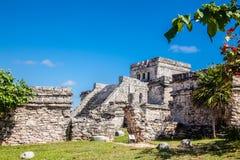 археологическое tulum руин Стоковое Фото