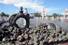 Архитектура парка VDNKH в Москве Каменный фонтан цветка Стоковые Изображения RF