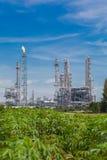 Архитектура химического завода рафинадного завода с голубым небом Стоковое Изображение