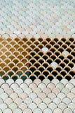 Архитектурноакустическая деталь сетки с текстурой масштабов рыб Стоковые Изображения