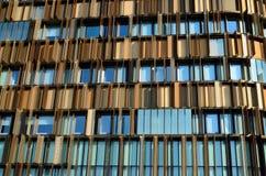 Архитектурноакустические детали и окна Стоковые Изображения RF