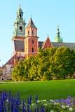 Архитектурный комплекс Wawel в Кракове Стоковое Фото