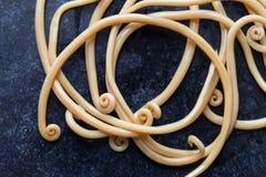 Аскаридоз заболевание причиненное паразитными lumbricoides Ascaris roundworm для образования стоковые фотографии rf