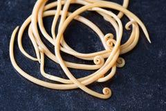 Аскаридоз заболевание причиненное паразитными lumbricoides Ascaris roundworm для образования стоковая фотография rf