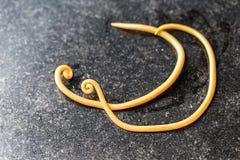 Аскаридоз заболевание причиненное паразитными lumbricoides Ascaris roundworm для образования стоковые изображения rf