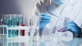 Ассистент лаборатории косметологии подготавливая органическое вещество для против старения сливк стоковые изображения