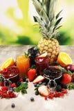 Ассортимент варениь, сезонных ягод, слив, мяты и плодов в стеклянном опарнике стоковая фотография