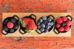 Ассортимент зрелых свежих ягод осени Стоковая Фотография RF