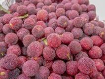 Ассортимент красных ягод YangMei от Китая стоковое изображение
