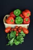 Ассортимент перца с томатом и базиликом Стоковые Фотографии RF