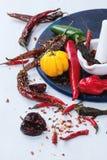 Ассортимент перцев горячего chili Стоковая Фотография