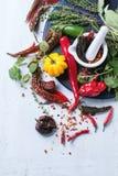 Ассортимент перцев и трав chili Стоковые Фото