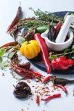 Ассортимент перцев и трав chili Стоковые Изображения RF