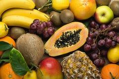Ассортимент свежего грейпфрута тропических и лета сезонного плодоовощей ананаса папапайи манго кокоса апельсинов кивиа бананов ли Стоковое фото RF