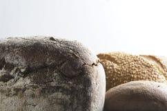 Ассортимент свежего сделанного хлеба против белой стены Скопируйте космос для текста стоковое изображение