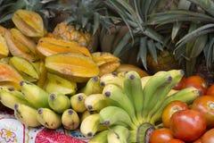 Ассортимент свежих органических плодоовощей Стоковые Фотографии RF