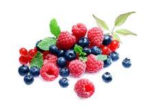 Ассортимент свежих ягод Стоковые Фотографии RF