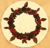 Ассортимент свежо скомплектованных ягод на белой предпосылке сформированной как круг стоковая фотография