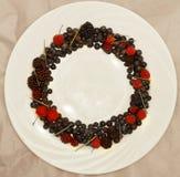 Ассортимент свежо скомплектованных ягод на белой предпосылке сформированной как круг стоковые фотографии rf