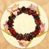 Ассортимент свежо скомплектованных ягод на белой предпосылке сформированной как круг стоковое изображение