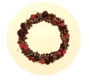 Ассортимент свежо скомплектованных ягод на белой предпосылке сформированной как круг стоковые фото