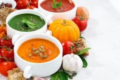 ассортимент супов и ингридиентов сливк свежего овоща стоковое фото