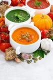 ассортимент супов и ингридиентов сливк свежего овоща Стоковые Изображения RF