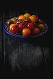 Ассортимент томатов вишни Стоковые Изображения