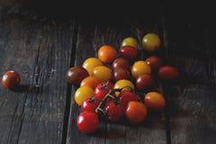 Ассортимент томатов вишни Стоковое фото RF