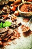 Ассортимент точных шоколадов и порошка какао Стоковые Фотографии RF