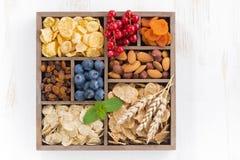 Ассортимент хлопий для завтрака, сухофрукта, ягод и гаек Стоковая Фотография