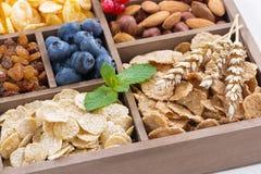 Ассортимент хлопий для завтрака, сухофрукта, ягод и гаек Стоковое Фото