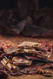 Ассортимент шоколадных батончиков, трюфелей, специй и бурого пороха стоковые фото