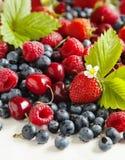 Ассортимент ягод лета стоковые фото