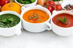 Ассортимент vegetable cream супов и ингридиентов на белизне Стоковое Изображение RF