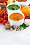 Ассортимент vegetable cream супов и ингридиентов Стоковые Фото