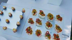 ассортированные закуски на тарелках их рыб и мясных рыб зеркал для 'шве акции видеоматериалы