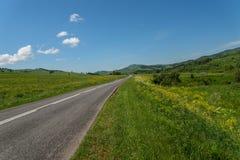 Асфальт гор лугов дороги Стоковое Изображение RF