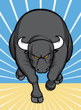 атакуя бык Стоковая Фотография