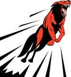 атакуя собака одичалая Стоковое Фото